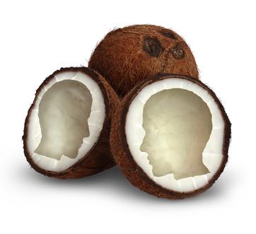 Kokosöl – Doping für das Gehirn