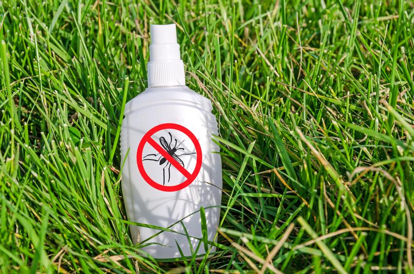 Insektenschutzmittel mit Kokosöl